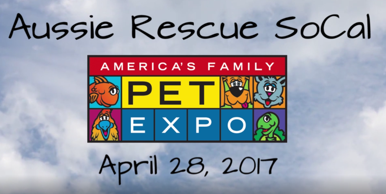 ARSC at OC Pet Expo